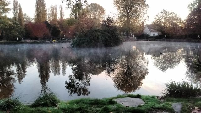 2 – Géramine – « Réveil dans la brume au parc Heller », novembre 2016