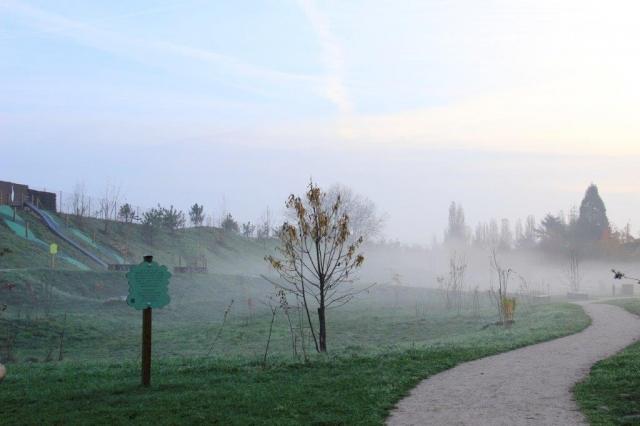 3 - Catherine THEVENET – « Brume matinale aux Alisiers », 23 novembre 2014