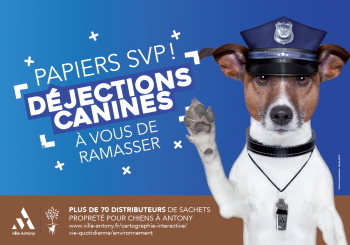 Déjections canines