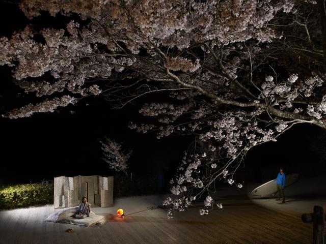 Yukari et les sakuras