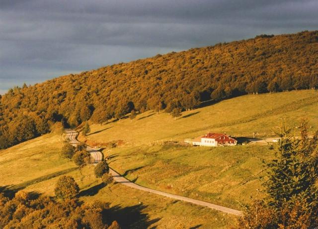 2 - Jean-Claude B.  - Sur la route des crêtes des Vosges