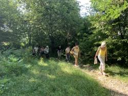 Visite participative au Bois de l&aposAurore