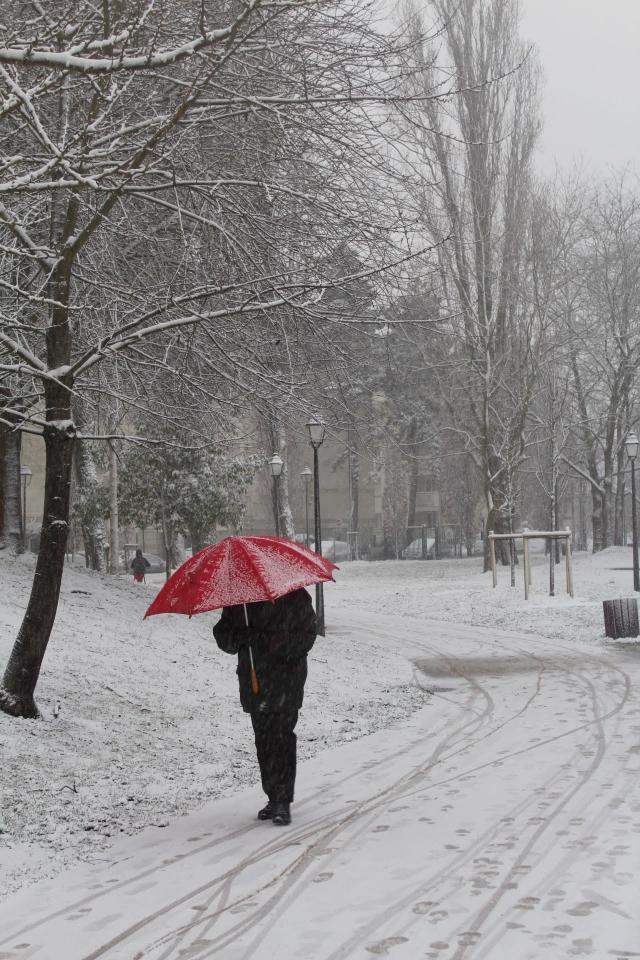 Et l'air de rien, il neige ! Photo de « Lety ».